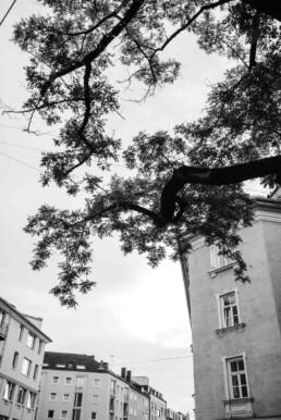 Aufnahme der Umgebung von Veronika Anna Fotografie Ismaninger Standesamt