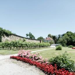 Geranien, Büsche Wein und mehr- Eine fasziniere natürliche Kulisse