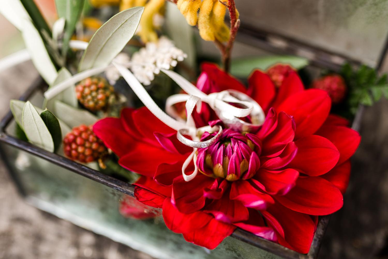 Dahlien als Ringkissen für Boho Hochzeit am Grandsberger Hof, Foto Veronika Anna Fotografie