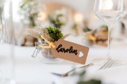 Sukkulente als Gastgeschenk bei nachhaltiger Hochzeit am Irghof Obernberg in Oberösterreich