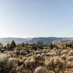 Wilde Landschaft in Kanada fotografiert von Veronika Anna Fotografie, Kanada Reise 2019