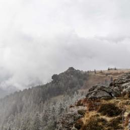 Naturfoto am Arber im bayerischen Wald fotografiert von Veronika Anna Fotografie