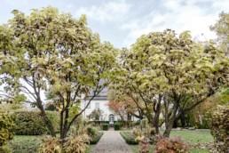 Das Schloss Maierhofen ist eine Hochzeitslocation im bayerischen Wald mit schöner Natur fotografiert von Veronika Anna Fotografie
